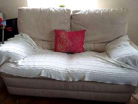 Freecycle Leather Sofa Two Seater
