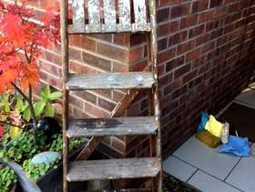 Freecycle Wooden step ladder