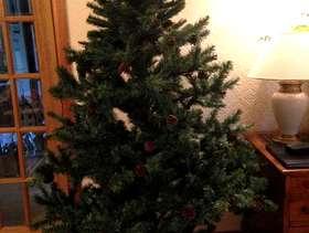 Freecycle Xmas tree