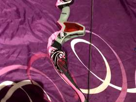 Freecycle Nerf rebelle bow & arrow