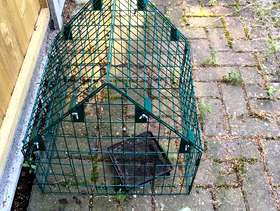 Freecycle Ground bird feeder and cage.
