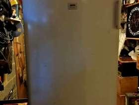 Freecycle Zanussi under counter freezer