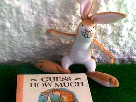 Freecycle Guess How Much I Love You Book and Toy