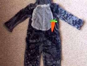 Freecycle Donkey Costume