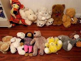 Freecycle Soft toys