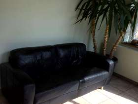 Freecycle Leather sofa - black
