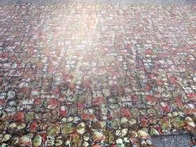 Freecycle 1950s wool carpet - HUGE!!